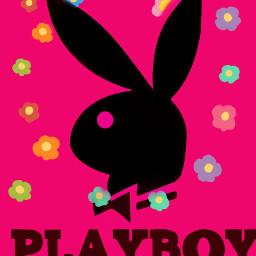 playboybunny freetoedit