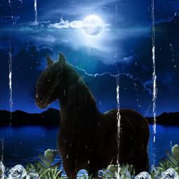 horses flowers night moon freetoedit