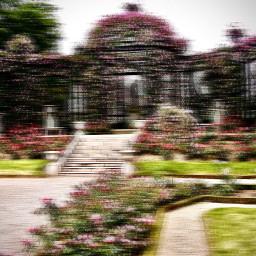freetoedit garden