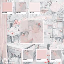 freetoedit notfreetoedit sunoo kimsunoo heeseung niki jay jake sunghoon jungwon leeheeseung nishimurariki riki parkjongseong simjaeyun parksunghoon yangjungwon enhypen pink white pinkaesthetic whiteaesthetic aesthetic korea kpop