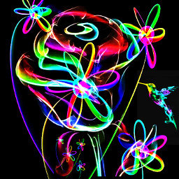 colorful abstract rainbow flowers plants leaves lines rose