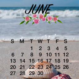 summer beach june srcjunecalendar2021 junecalendar2021 freetoedit