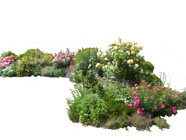 #wildflowers #flower #nature #landscape #collage #aesthetic #grassland #collages #aestheticedit #naturalbeauty #flowerpower #newsticker #usemysticker