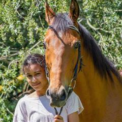 ari_equestrian