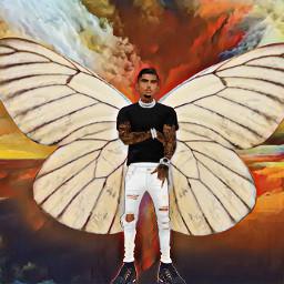 photo background butterfly man freetoedit