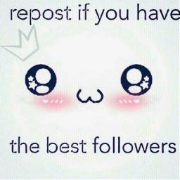followers freetoedit