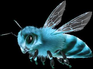 @missbeautifulgalaxy freetoedit honey honeycomb honeypot jar miel nectar bee bees honeybee bumblebee scbees beeswax biene animal insect insects sweet sugar yellow gold orange black purple ftestickers