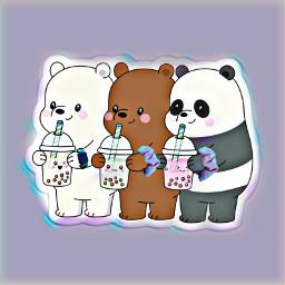 freetoedit bear bubbletea bubble tea polarbear panda cute