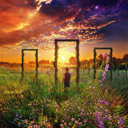 freetoedit madewithpicsart surreal fantasy landscape sunset meadow flowers