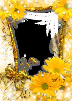 @missbeautifulgalaxy freetoedit flower flowers floral florist bouquet purple pink blue red green yellow apricot peach peachflower black white pastel colorful nature beauty beautiful sticker stickers ftestickers