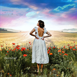 landscape meadow poppies field flowers sky clouds geodemagiceffect freetoedit