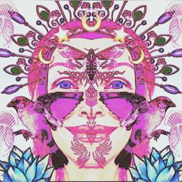 pinkcollage pink faces pinkasthetic ccpinkaesthetic2021 pinkaesthetic2021