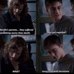 siriusblack nevillelongbottom harrypotter hermionegranger expelledfromhogwartz