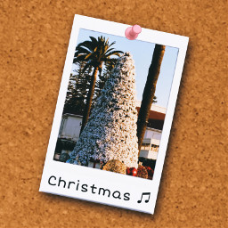freetoedit christmas christmastree throwbackthursday