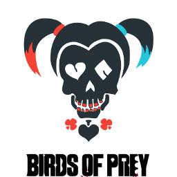freetoedit edit fanart harleyquinn quinnharley arlequina arlequinaa skull skullart birdsofprey avesderapina