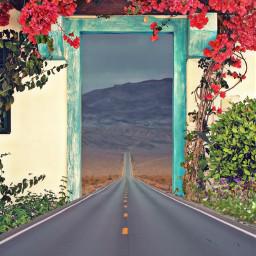 easyedit doorway road flowers colorful freetoedit picsart