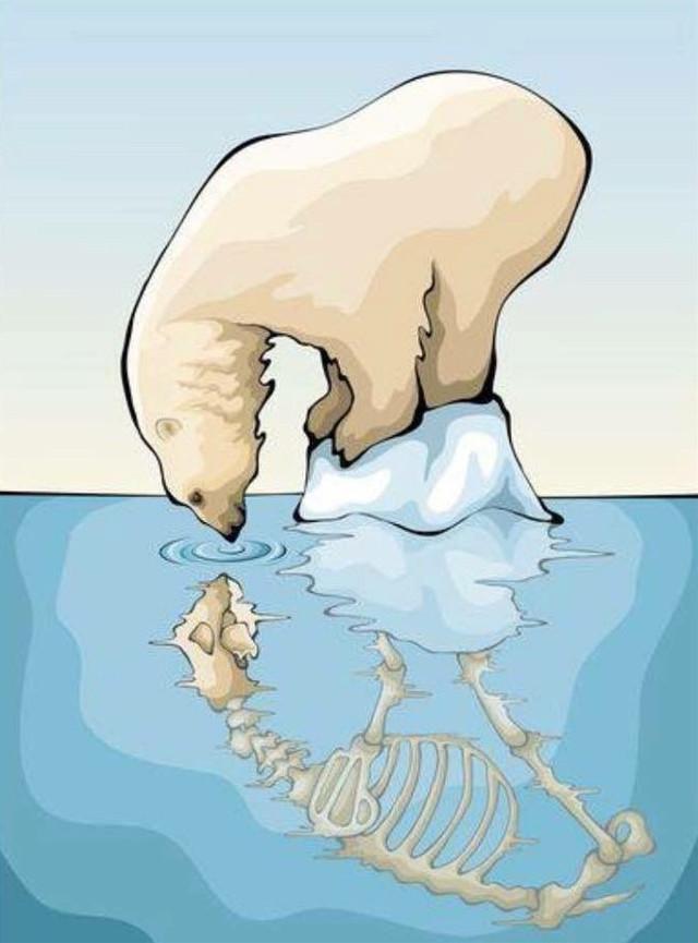 This is so sad but it is the reality, the Arctic is melting because of climate change, which is caused by our actions, let's avoid global warming, together you can make a difference.  *´¯`*.¸☁️¸.*´¯`* - *´¯`*.¸☁️¸.*´¯`*  ᴍʏ ᴀᴄᴄᴏᴜɴᴛs: ʙʟᴏɢ::   ᴏʀ ʏᴏᴜ ᴄᴀɴ ғɪɴᴅ ɪᴛ ᴛᴏᴏ ʟɪᴋᴇ blogsaveourplanet ᴀʟʟ ᴛᴏɢᴇᴛʜᴇʀ.  ᴛɪᴋ ᴛᴏᴋ:: @ saveourplanetoficial ʏᴏᴜᴛᴜʙᴇ:: save our planet channel   *´¯`*.¸☁️¸.*´¯`* - *´¯`*.¸☁️¸.*´¯`*  ᴘᴇᴏᴘʟᴇ ᴡʜᴏ ɪs ᴍᴀᴋɪɴɢ ᴀ ᴅɪғғᴇʀᴇɴᴄᴇ:: @doggirlinthecity   @charlieharpham @pixartqueen07   @cxsmicluv-   @coffee-jclly  @jadez_edits   @her0ber0   @amythtst   @addiegrace5   @theaditisharma @axthetic_edits   @secret_me_13   @ruelfqn   @sugarcookiesss   @peachyy_gloss  @vkaul   @savanahhhh34   @bby_singlebxtch  @volente926   @mrs_tom_holland   @finns_wolfhxrds   @charlottebarbara   @glossierlexa   @treegirl18  @cotton-cqndy  @_rihanna_diamonds_  @aesreplays   @peachydarling  @its_kara  @_izzyeditz  @iamshahrzad_d  @artist510  @eternal_bliss  @py10love55  @_stickermaker_  @ts_luver  @chatty_celebrities  @jo_truly_xoxo @saloom-art @scarlet_spellmqn-23 @rubyzzzzz @juliateaz @artist510 @-vqnillanichez @gucciqzx @sunset_daisy @_7acostanza @nomxurners @cosmicpoems @smoyermisha @earthhero @hisloveneverfails- @helplxss- @for-the-planet @mxrais- @carolina_editz- @-vqlentines @loserr_acxdemy @fr0gwh0r3 @aaryanraghavan @theaugustgirl300 @ioli_gr @mads_b3914 @sharks_rule  @tiashaarland @ecowarrior @brianaibett @honeylovedits @_seallover_ @fruitycloudsxo @winter-widow @taerrestrxal @emmuccia_08 @gogylcve- @nostxlgia_vibessss @imakeuglyeditz @morenafvan @kayleynicolew @jovannaxsunshines350  @helpsaveareplanet  -----------------------  ᴄᴏᴍᴍᴇɴᴛ 🌎 ᴛᴏ ʙᴇ ᴀᴅᴅᴇᴅ.  ᴄᴏᴍᴍᴇɴᴛ ✨ ɪғ ʏᴏᴜ ᴄʜᴀɴɢᴇ ʏᴏᴜʀ ᴜsᴇʀɴᴀᴍᴇ.  ᴄᴏᴍᴍᴇɴʀ ☁️ ᴛᴏ ʙᴇ ʀᴇᴍᴏᴠᴇᴅ.  -----------------------  ʜᴀsʜᴛᴀɢ:: #savetheoceans #savetheearth #saveourplanet #ourplanet #change #help #fyp #remember #news #page #interesting #nature #oceans #animals #climatechange #plastic #nomoreplastic #blogsaveourplanet #saveourplanetoficial #artic