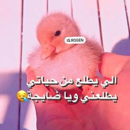 لايك_ومتابعه_وكومنت_لطفاا local