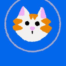 freetoedit cat phonebackground blueandorange cutcat foryou cute lovely useitpls aethetic beautiful