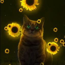 sunflower flower neon glow freetoedit challengewinner