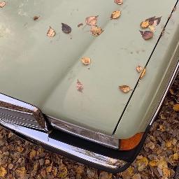 aesthetic asthetic aesthetics asthetics car leaves autumn fall