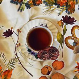 autumn tea fall warm cozy freetoedit ircautumntea autumntea