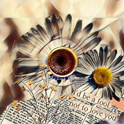 freetoedit autumntea picsart ircautumntea