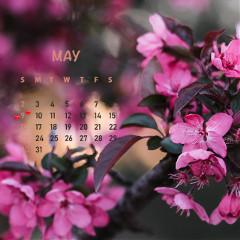 New,month,,new,calendar,sticker,remix!