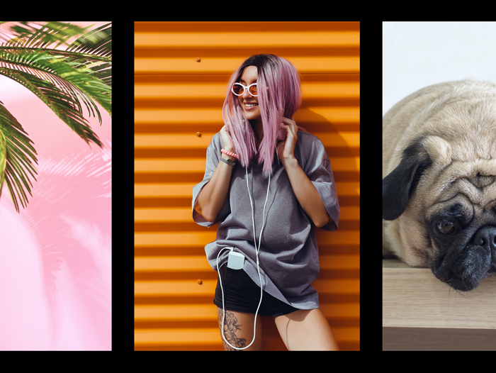 Palm purple hair happy girl and dog photo collage